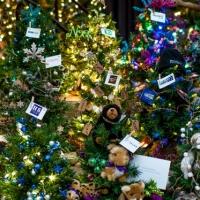 Festival of Trees 2015 Sponsor Tree Forest