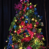AuroraBorealis-Tree19SA.jpg